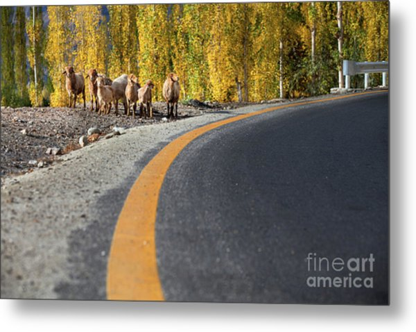 Metal Print featuring the photograph Highway Story by Awais Yaqub