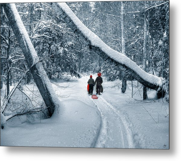Hiking Into The Gully Metal Print