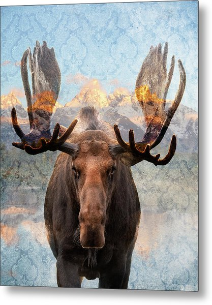 Hometown Moose Metal Print