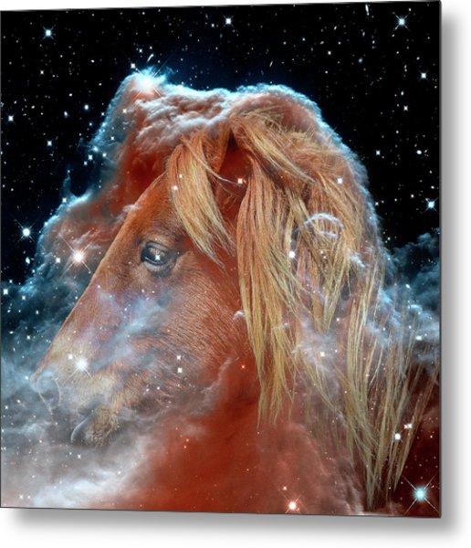 Metal Print featuring the photograph Horsehead Nebula With Horse Head Outer Space Image by Bill Swartwout Fine Art Photography