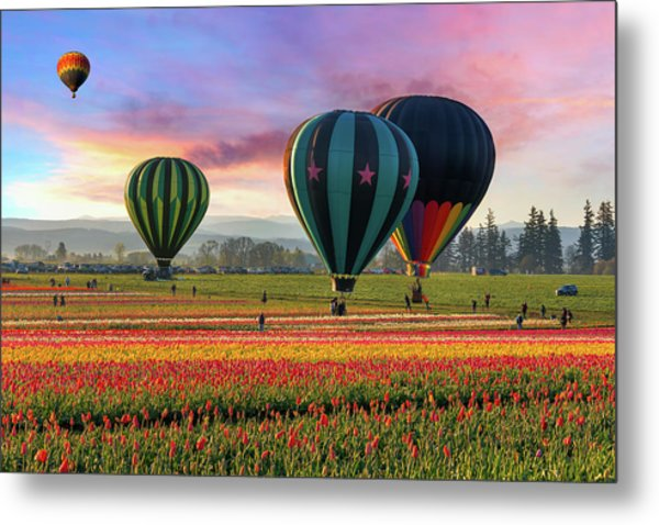 Hot Air Balloons At Sunrise Metal Print by David Gn Photography
