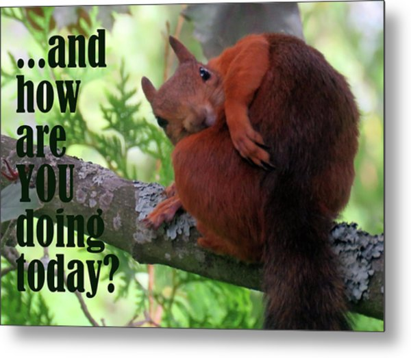 How Are You Doing Today Metal Print