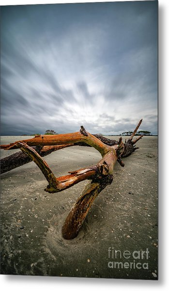 Hurricane Florence Beach Log - Portrait Metal Print