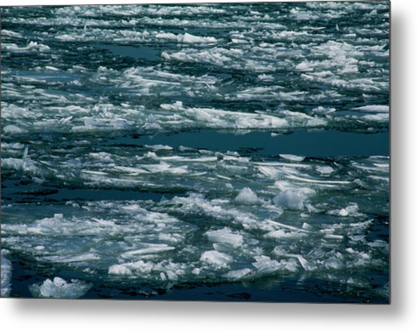 Ice Cold With Filter Metal Print