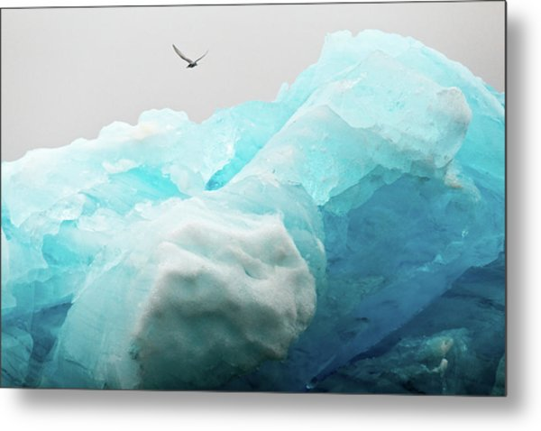 Metal Print featuring the photograph Iceland Iceberg by Nicole Young