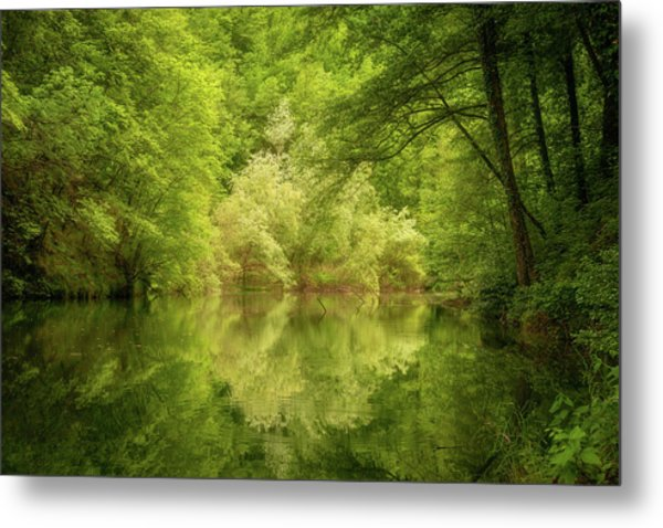 Metal Print featuring the photograph In The Heart Of Nature by Mirko Chessari