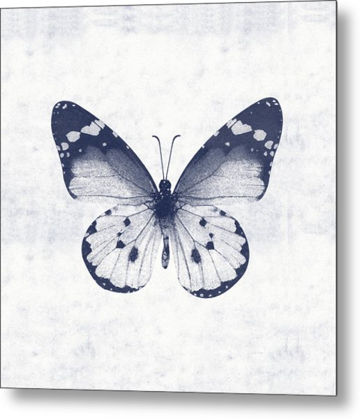 Indigo And White Butterfly 1- Art By Linda Woods Metal Print