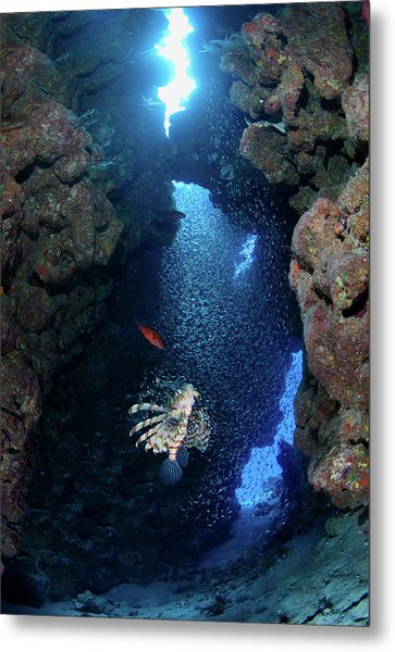 Inside Canyon Metal Print by Nature, Underwater And Art Photos. Www.narchuk.com