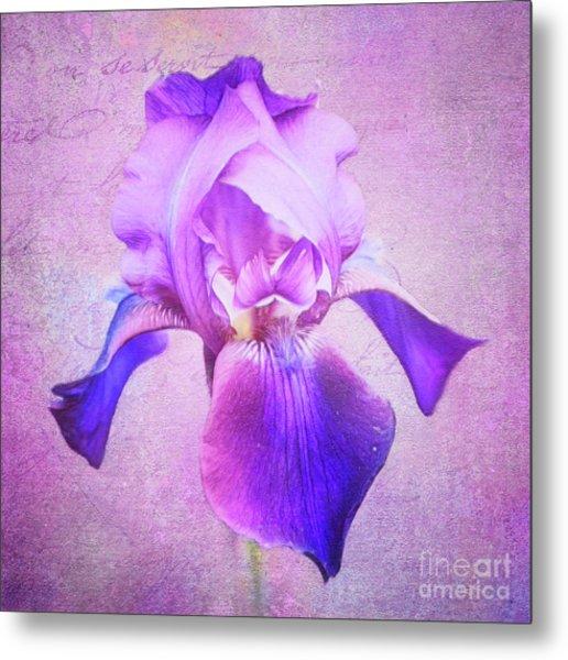 Pretty In Purple Iris Metal Print