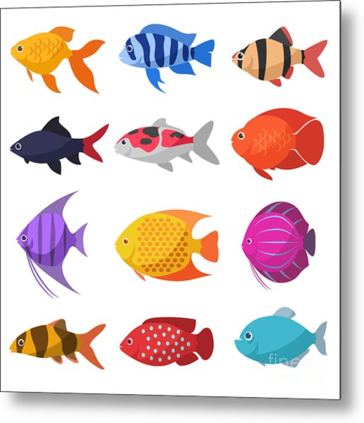 Isolated River Fish. Set Of Freshwater Metal Print