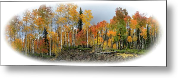 It's All About The Trees Metal Print