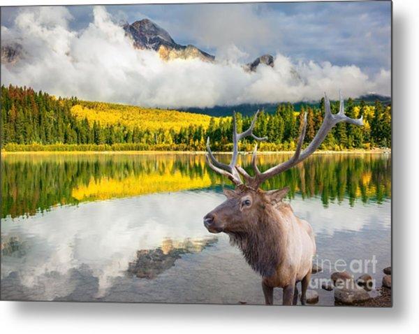 Jasper National Park In The Rocky Metal Print