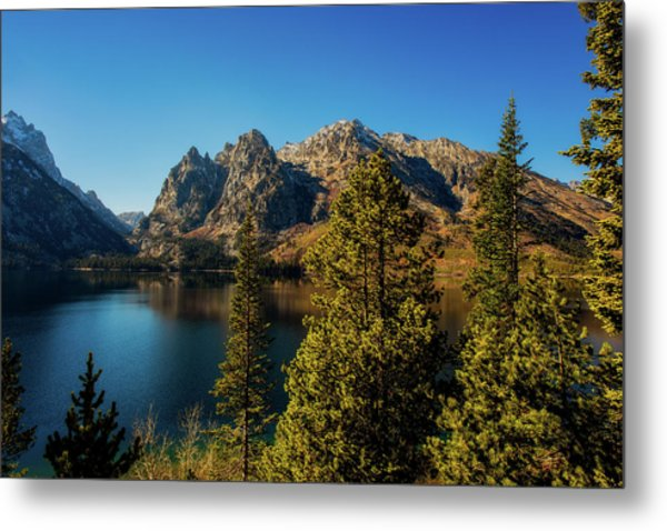 Metal Print featuring the photograph Jenny Lake by Pete Federico