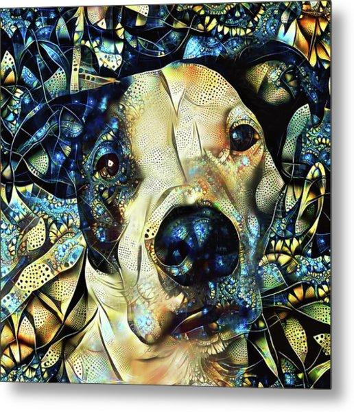 Joshua The Staffordshire Terrier Great Dane Cross Metal Print