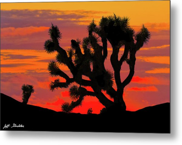 Joshua Tree At Sunset Metal Print