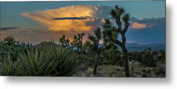 Joshua Tree Thunder Metal Print