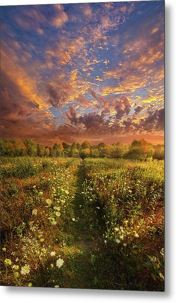 Metal Print featuring the photograph Just Follow Your Feet by Phil Koch