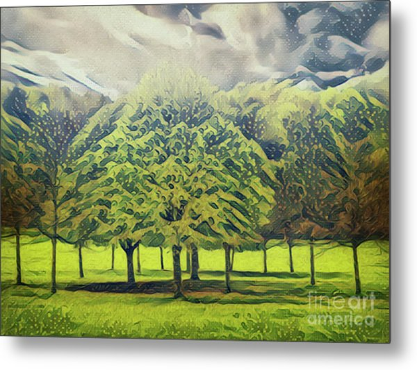 Metal Print featuring the photograph Just Trees by Leigh Kemp