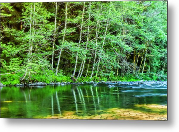 Metal Print featuring the photograph Kalama River Soothing Flow by Dee Browning