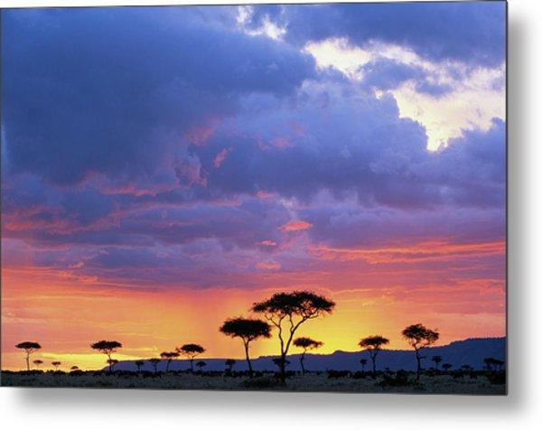 Kenya, Masai Mara Game Reserve, Storm Metal Print by Paul Souders