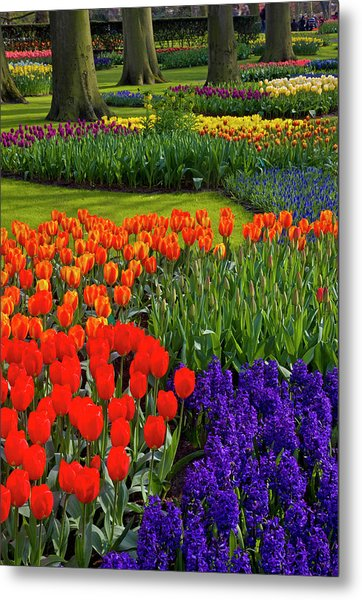 Keukenhof Gardens In Holland Metal Print