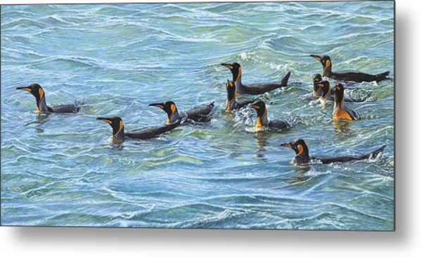 Metal Print featuring the painting King Penguins Swimming by Alan M Hunt