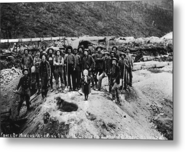 Klondike Miners Metal Print by Hulton Archive