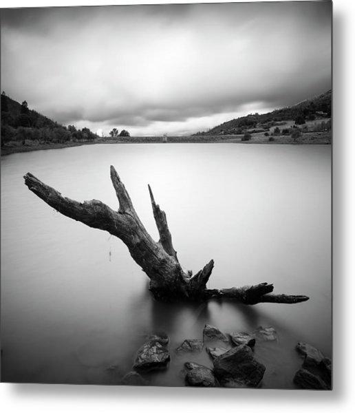 Lake Cuyamaca Stump And Clouds Metal Print by William Dunigan