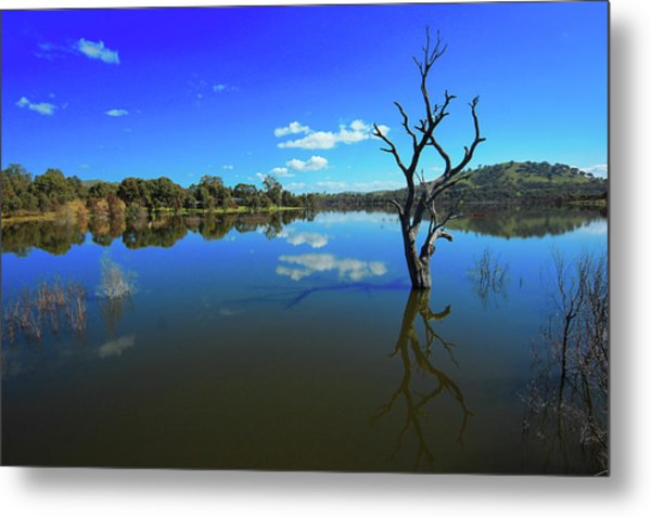 Lake Eildon Metal Print