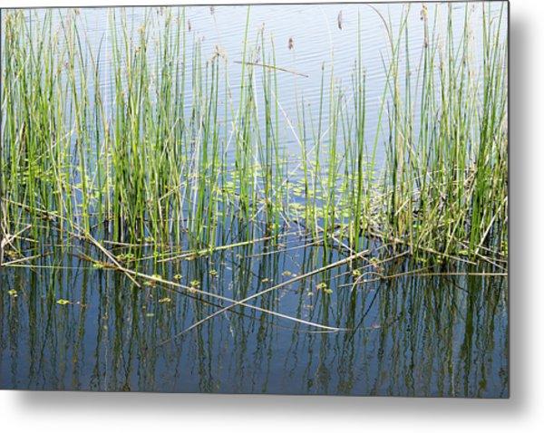Lake Ilsanjo_533_18 Metal Print