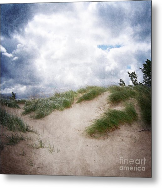 Lake Michigan Sand Dunes Metal Print