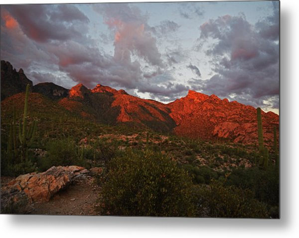 Metal Print featuring the photograph Last Light On Catalina Mountains by Chance Kafka