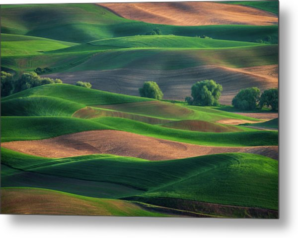 Late Afternoon In The Palouse Metal Print