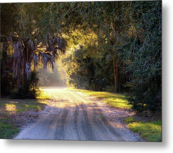 Light, Shadows And An Old Dirt Road Metal Print