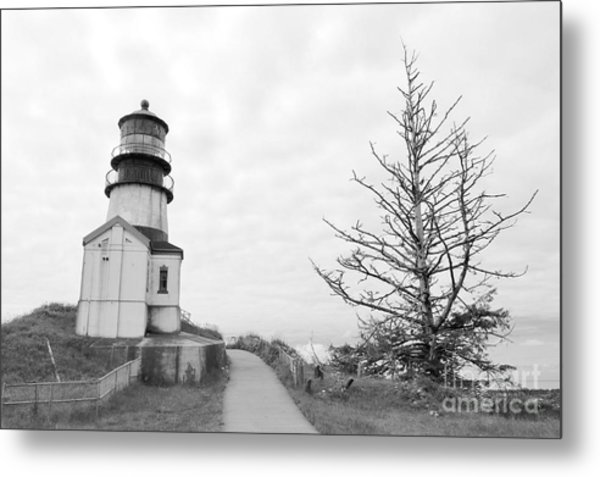 Lighthouse And Tree Lean In Bw Metal Print