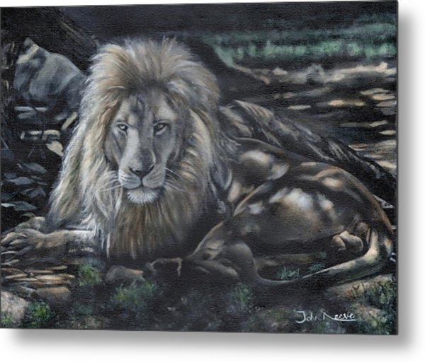 Lion In The Shade Metal Print