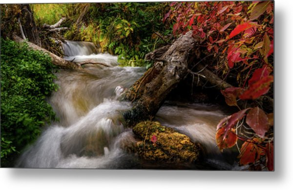 Metal Print featuring the photograph Little Deer Creek Autumn by TL Mair