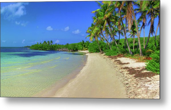 Living On An Island Metal Print