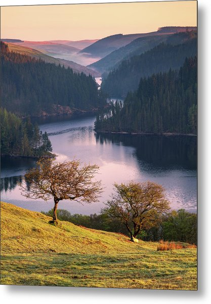 Metal Print featuring the photograph Llyn Brianne Sunrise by Elliott Coleman