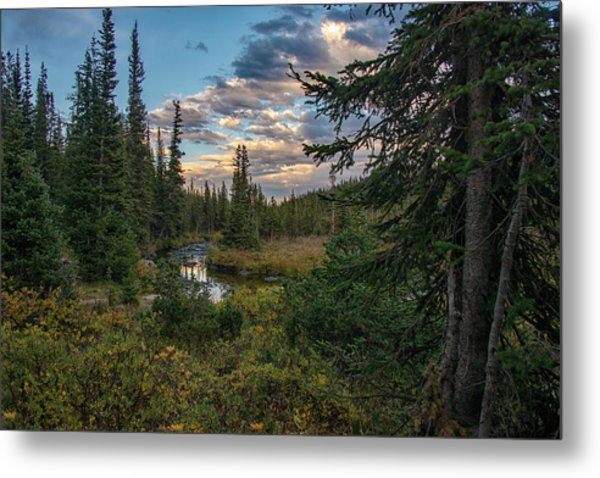 Metal Print featuring the photograph Long Lake Outlet by Darlene Bushue