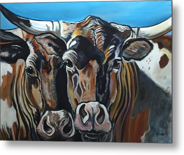 Longhorns, Interrupted Metal Print
