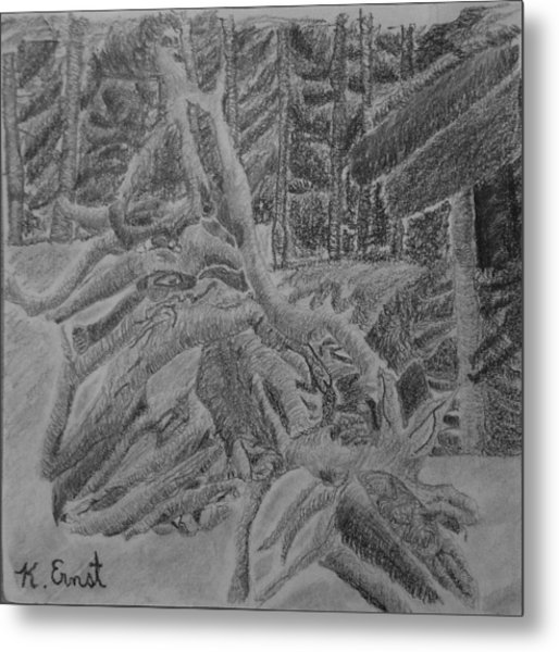 Looking Out For The Forest Metal Print