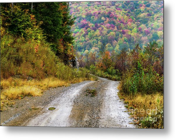 Lost In The Hills Metal Print