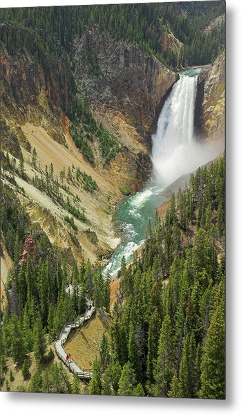 Lower Falls On The Yellowstone River Metal Print by Neale Clark / Robertharding