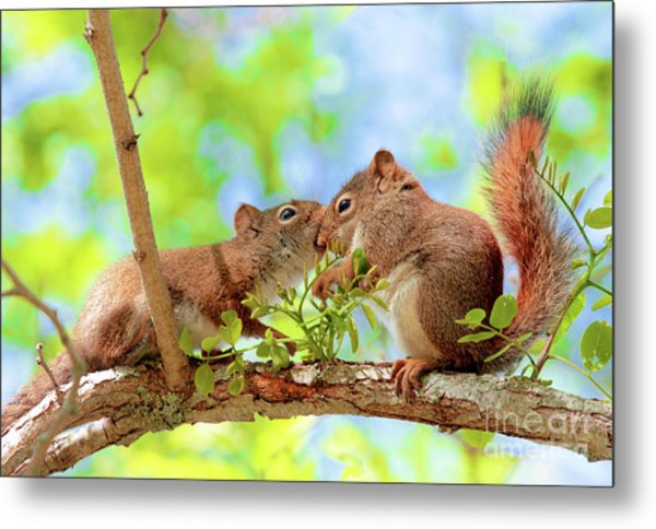 Mama Red Kissing Baby Metal Print