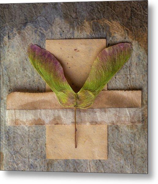 Maple Tree Seed Pod Metal Print
