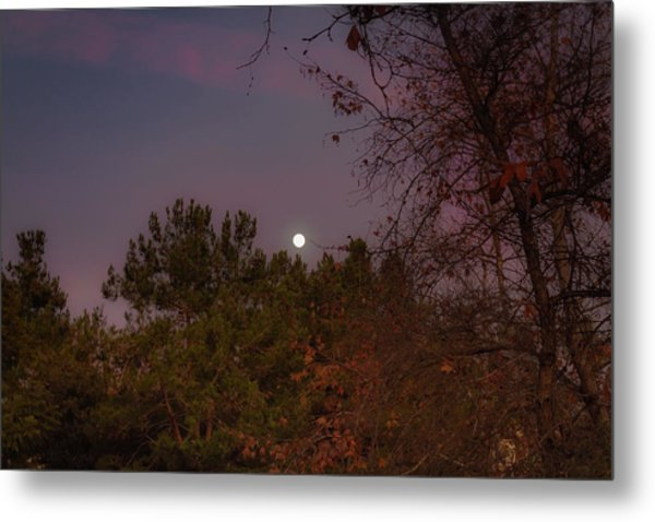 Metal Print featuring the photograph Marvelous Moonrise by Alison Frank