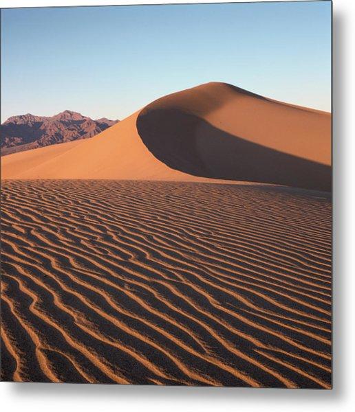 Mesquite Dunes 1-sq Metal Print