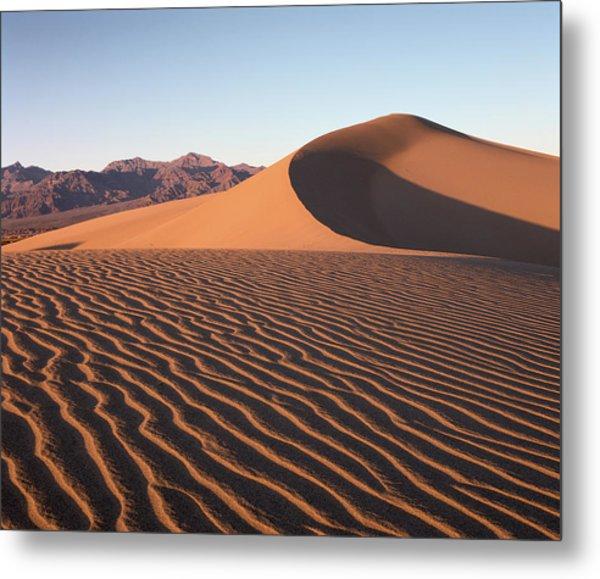 Mesquite Dunes 1 Metal Print