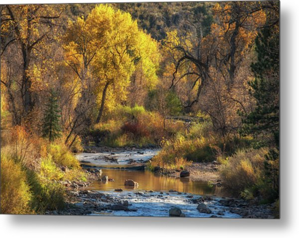 Metal Print featuring the photograph Middle Saint Vrain by Darlene Bushue